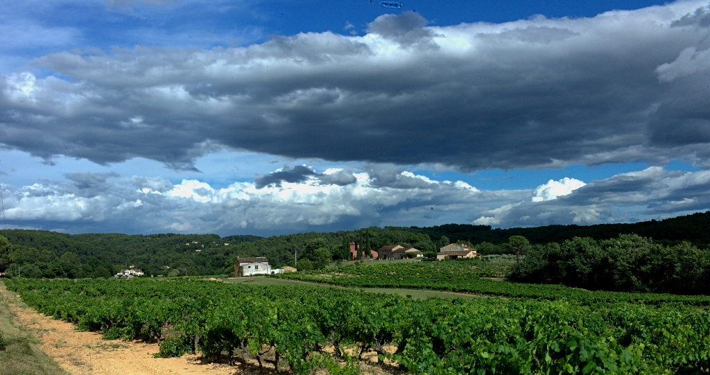 Cloudscape_with_vineyards