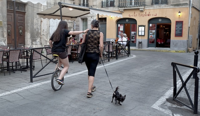 Unicyclist with dog-blog