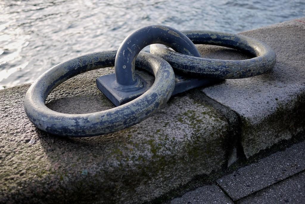 Ring Ring_blog